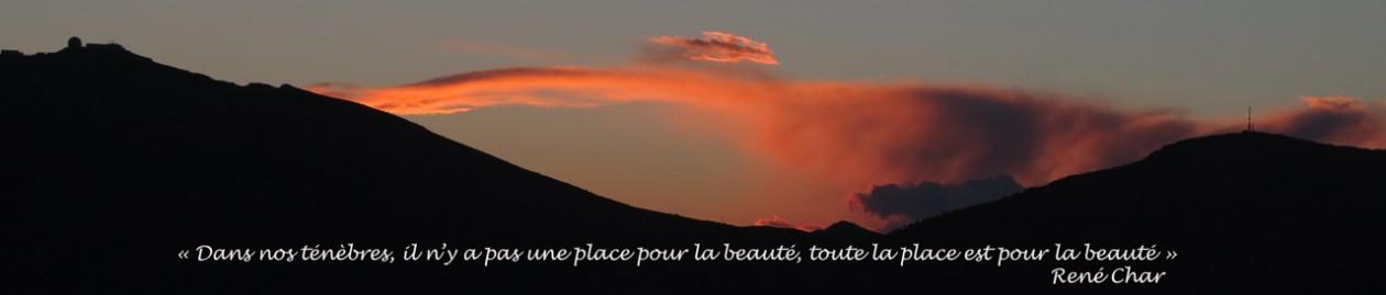Brigitte DERUY — écriture – poésie – édition – théâtre