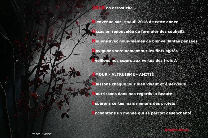 2018 en acrostiche